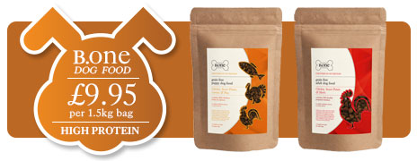Premium Grain-Free Dog Food