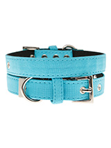 Neon Blue Fabric Collar - Our high visibility Neon Blue collar has a clean contemporary bold <br />style. It is lightweight and incredibly strong. The collar has been <br />finished with chrome detailing including the eyelets and tip of the <br />collar. A matching lead and harness are available to purchase <br />separately....